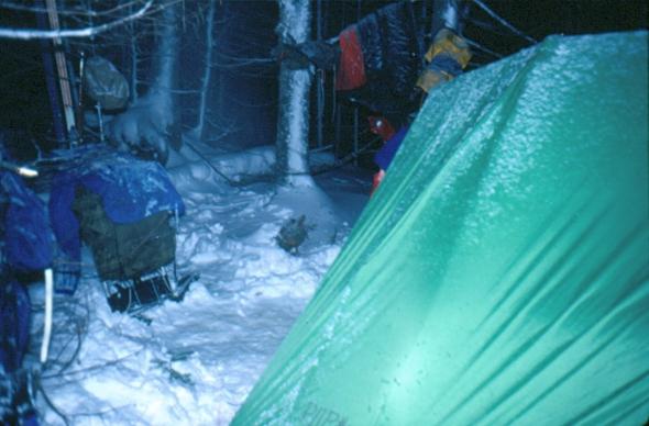 rwp-winter-12